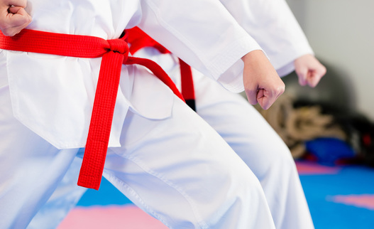 benefits of karate